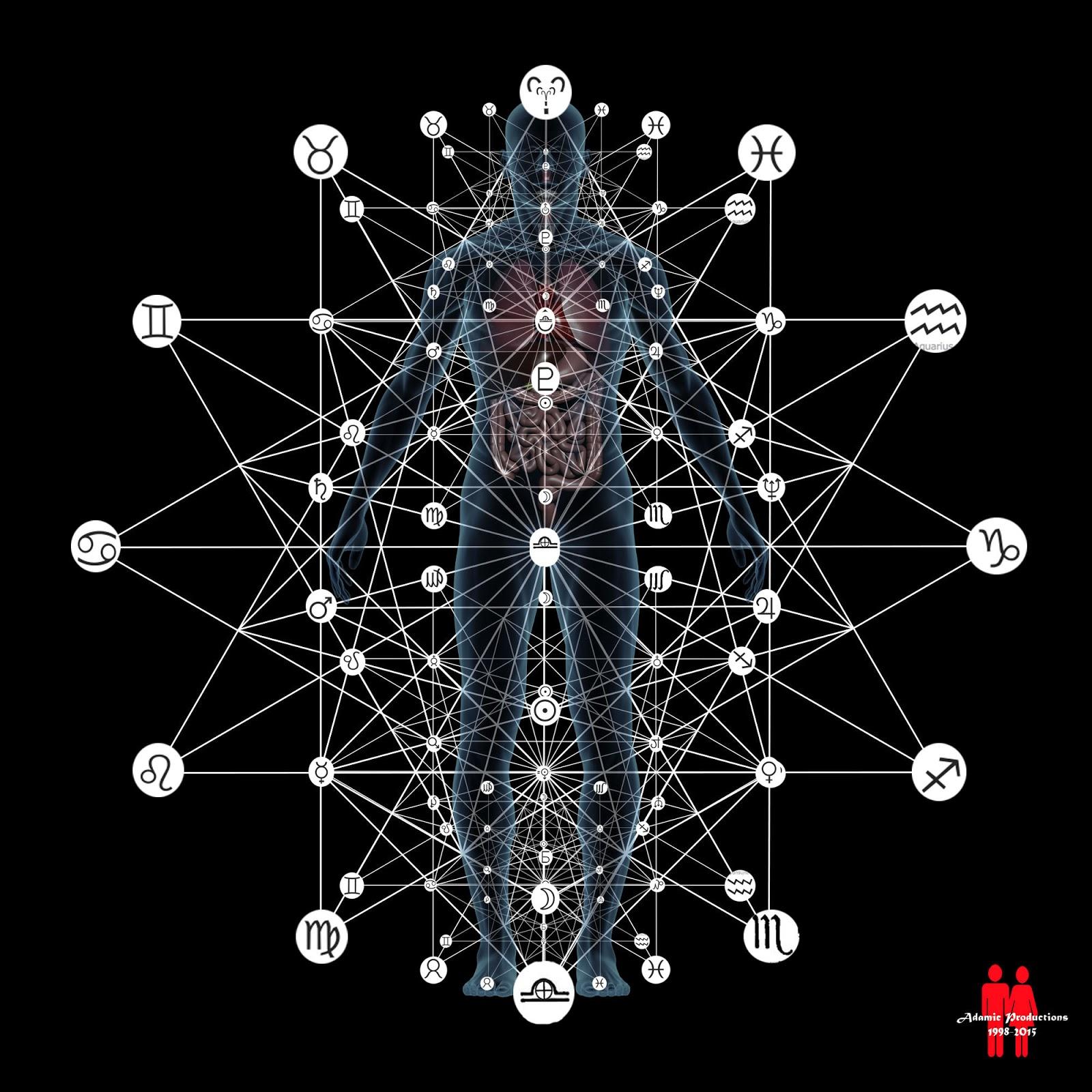 adam kadmon  Krishna's Wheel: A Complete Acupressure System: Adam Kadmon - The ...