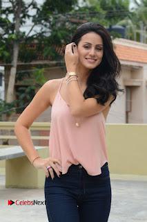 Actress Larissa Bonesi Pictures in Denim Jeans at Thikka Movie Interview  0118.JPG