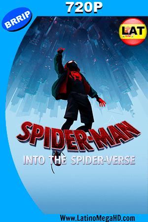 Spider-Man: Un Nuevo Universo (2018) Latino HD 720P ()