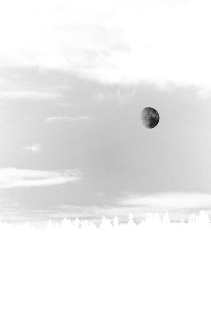 Cisza nocna. Małe Ciche. Księżyc nad lasem. Koncepcyjna fotografia krajobrazu. Solaryzacja. Fotografia odklejona. fot. Łukasz Cyrus