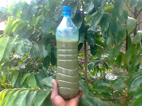 Dr Oba Herbal medicine That Cure All Kind Of Deadly Disease