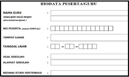 Contoh Format Biodata Peserta Plpg Terbaru Homesdku
