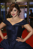 Payal Ghosh aka Harika in Dark Blue Deep Neck Sleeveless Gown at 64th Jio Filmfare Awards South 2017 ~  Exclusive 093.JPG