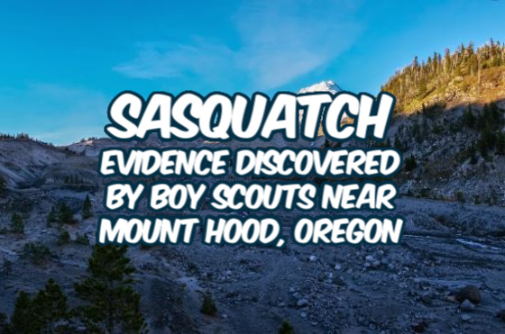 Sasquatch Evidence Discovered By Boy Scouts Near Mount Hood, Oregon