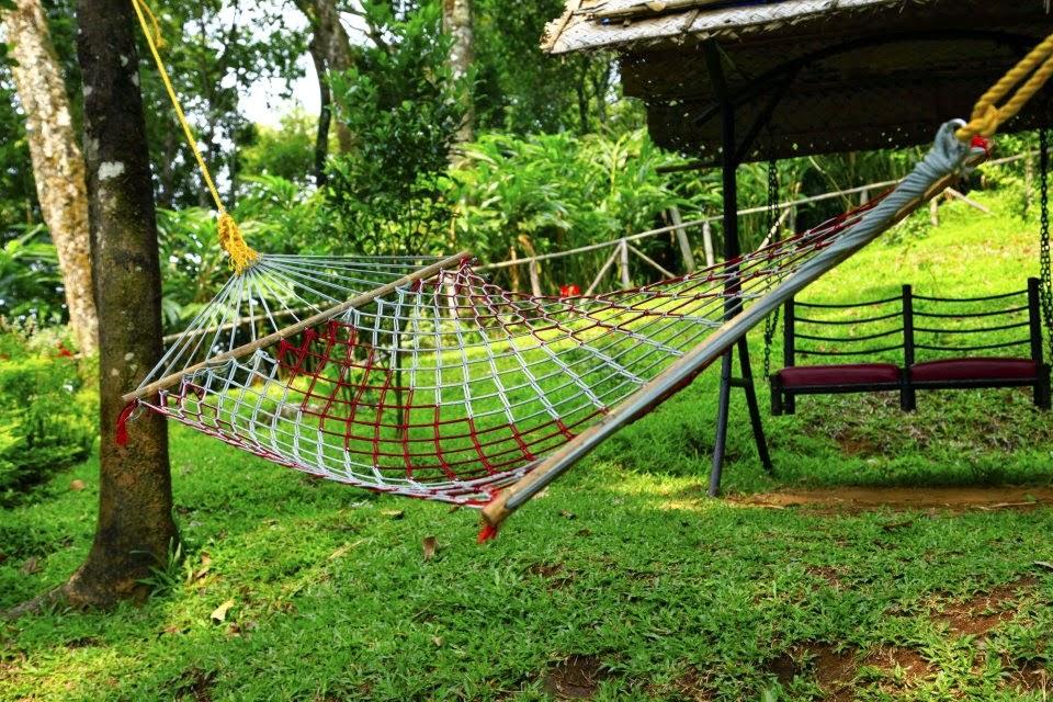 Bluebells Valley Resort Munnar Best Discounts For Munnar