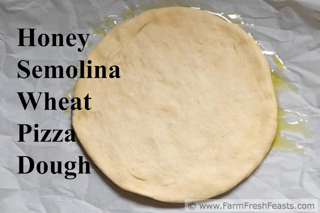 a smooth basic pizza dough with a sturdy crust and nice chewiness