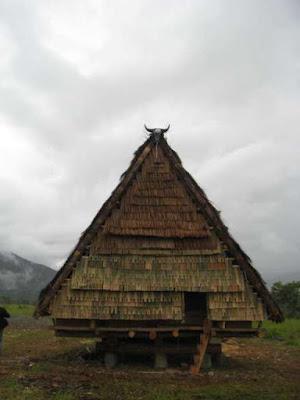 Foto Rumah Adat Sulawesi Tengah