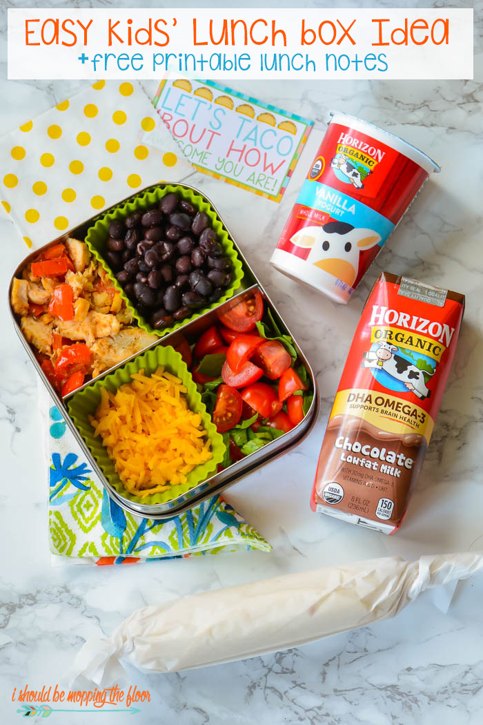 i should be mopping the floor: Kids' Lunch Box Idea