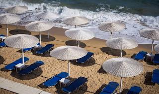 Απίστευτες εικόνες στην παραλία στο Ζούμπερι: «Βγήκαν» γιγαντιαίες κατσαρίδες
