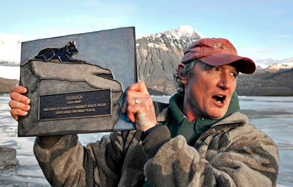 He Watched Helplessly As A Wild Wolf Approached His Dog. Then Something Incredible Happened. - After Romeo's passing in 2010, the residents of Juneau held a memorial for the wolf and had this special plaque made in his honor.