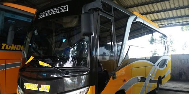 sewa bus medium cirebon