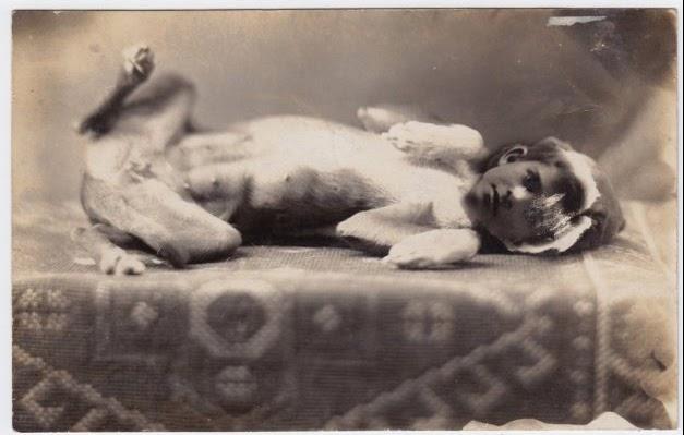 Fotografias sinistras de crianças para tirar seu sono fotografia crianças peculiares