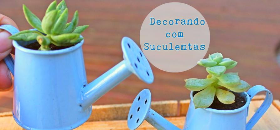Cactos, Suculentas, Planta