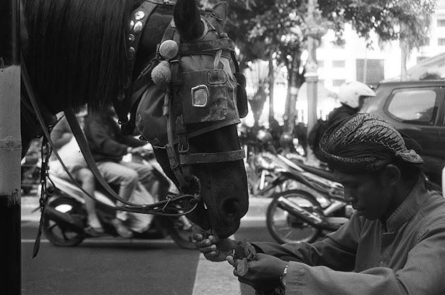 Jalan Malioboro - Tempat Wisata di Jogja