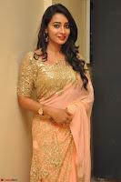 Bhanu Shri looks stunning in Beig Saree choli at Kalamandir Foundation 7th anniversary Celebrations ~  Actress Galleries 046.JPG