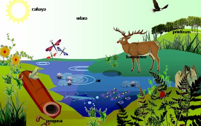 Pengertian Ekosistem Darat, Macam, dan Ciri-cirinya
