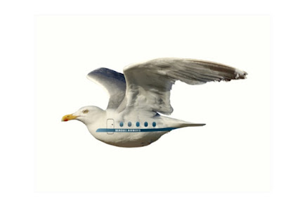 Seagull AIrlines | Seagull Airways prints