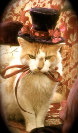 Our Mad Catter, click on the picture to see the party...