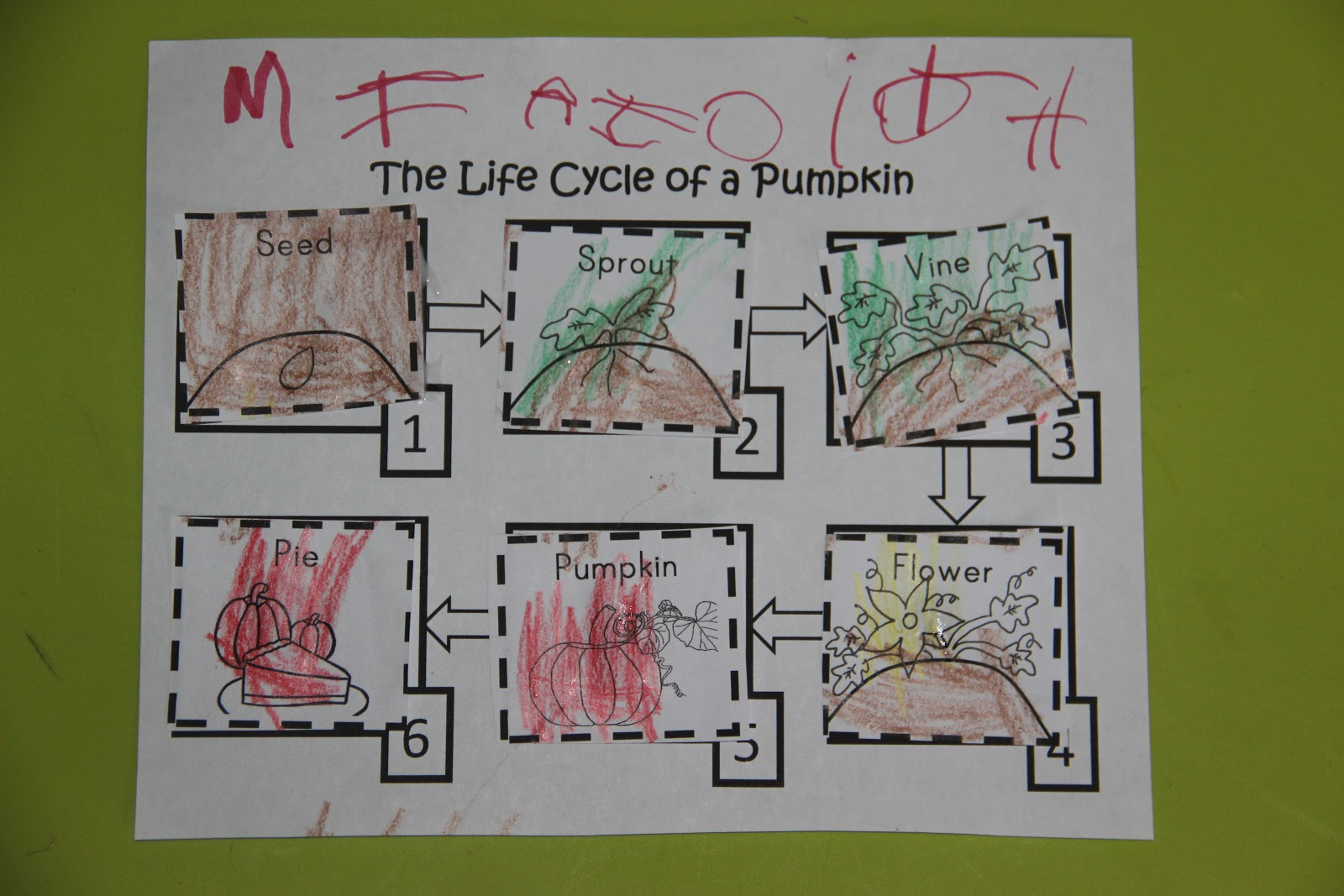 The Johnson Journey Unit Theme Fall Harvest Pumpkins