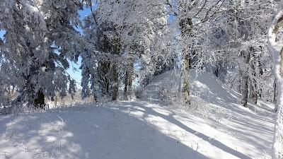 Winterlandschaft auf knapp 1300 m