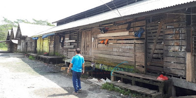 Rumah Potong Hewan (RPH) yang ada di Kuala Kapuas tidak Layak
