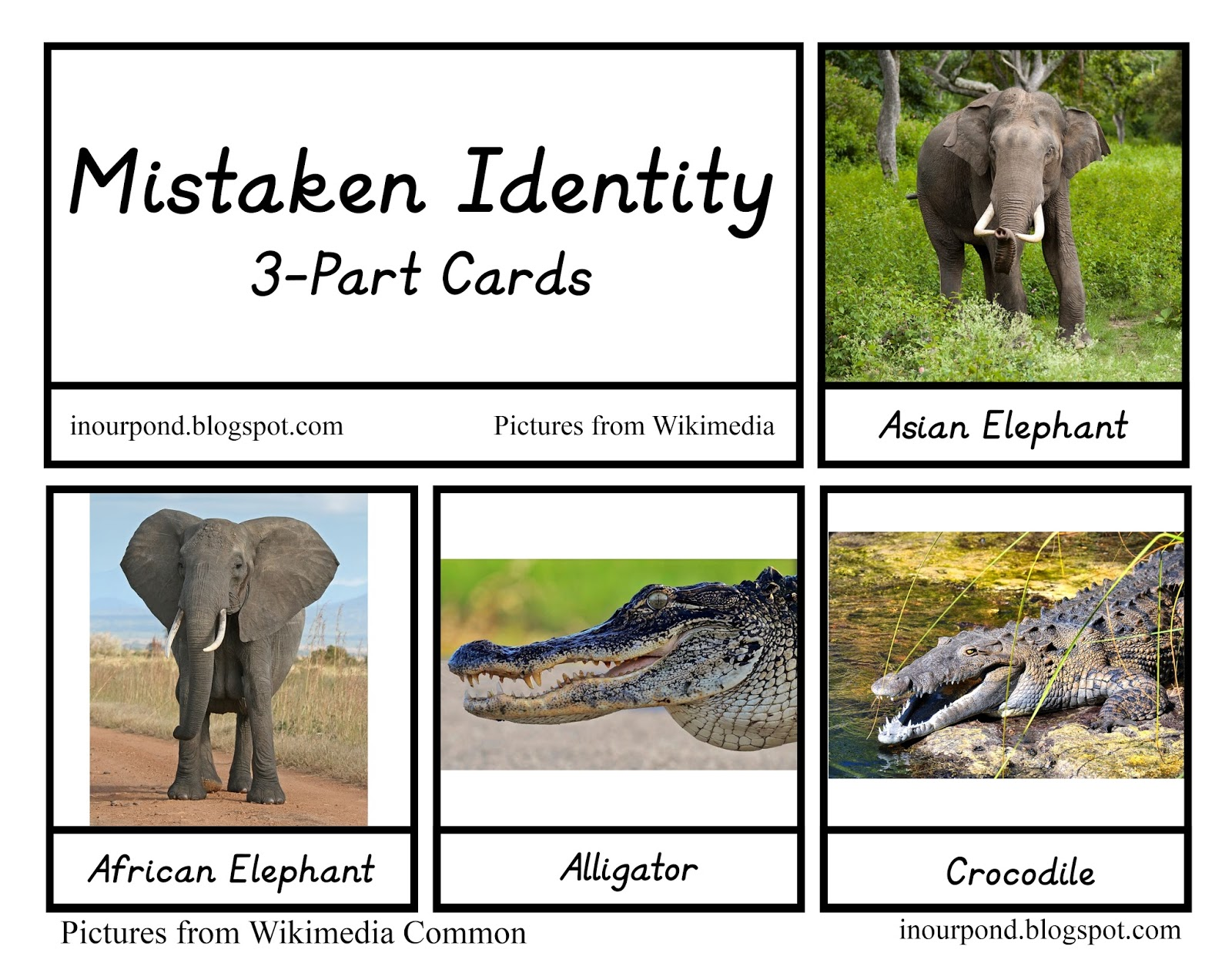in our pond animals with mistaken identity printables