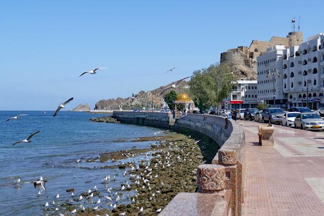 Corniche, Mutrah, Muscat, Fort, Oman, Meer, Möwen
