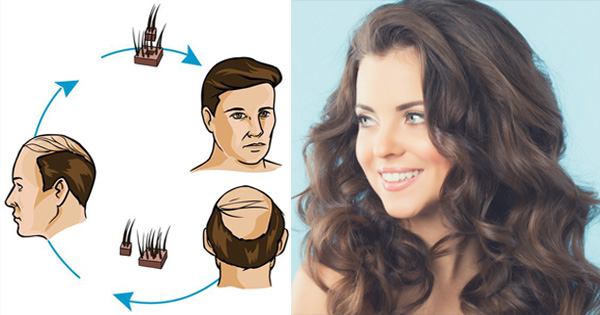 What is HAIR ? Types of Human Hair