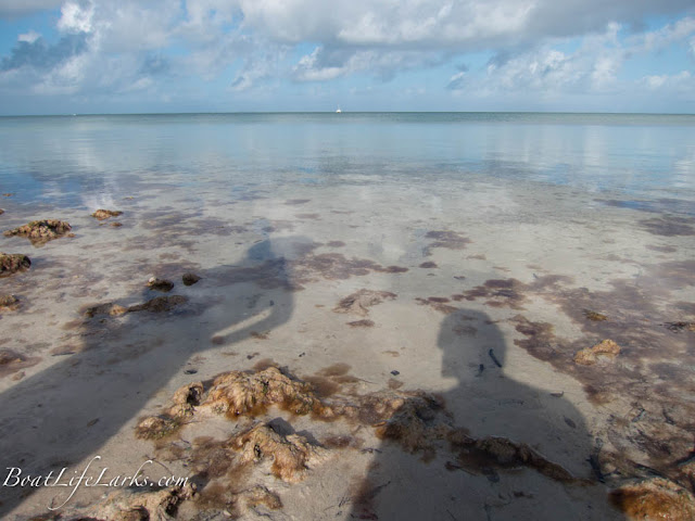 Clear waters at Elliot Key Beach