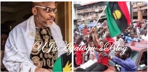 Biafra is near, the 2019 election has shown that voting in Nigeria is useless – IPOB