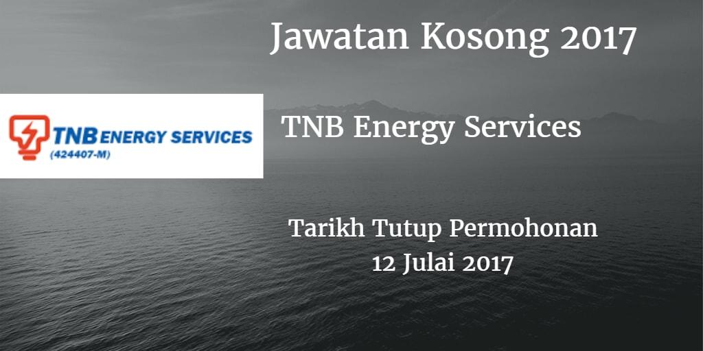 Jawatan Kosong TNBES 12 Julai 2017