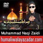 http://www.humaliwalayazadar.com/2017/09/syed-muhammad-naqi-zaidi-nohay-2018.html