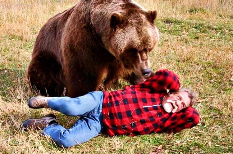 Bir ayı ile karşılaştığınızda ağır ağır geri çekilin, olur da sizi kovalarsa daire çizerek kaçın.