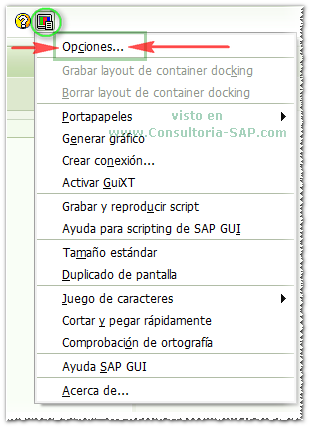 SAP GUI: Opciones...