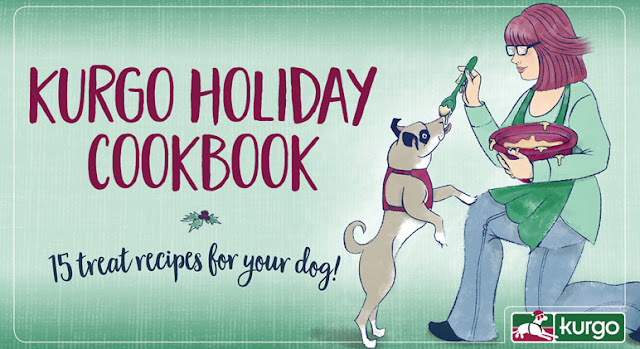 Link to Kurgo 2016 Holiday Cookbook