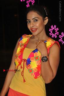 Telugu Actress Model Sri Reddy Latest Stills in Yellow Dress  0039.JPG