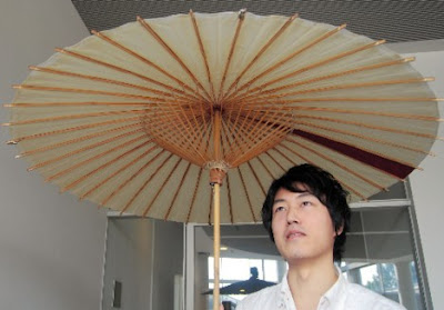 Creative Umbrellas and Cool Umbrella Designs (15) 15