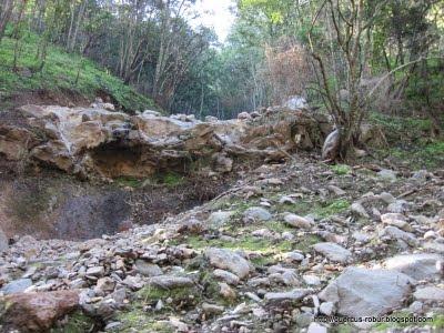 Cerro Viejo - Afluente 02
