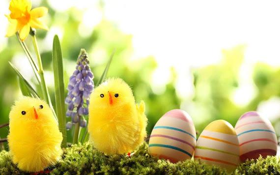 Happy Easter download besplatne pozadine za desktop 1440x900 e-cards čestitke Uskrs