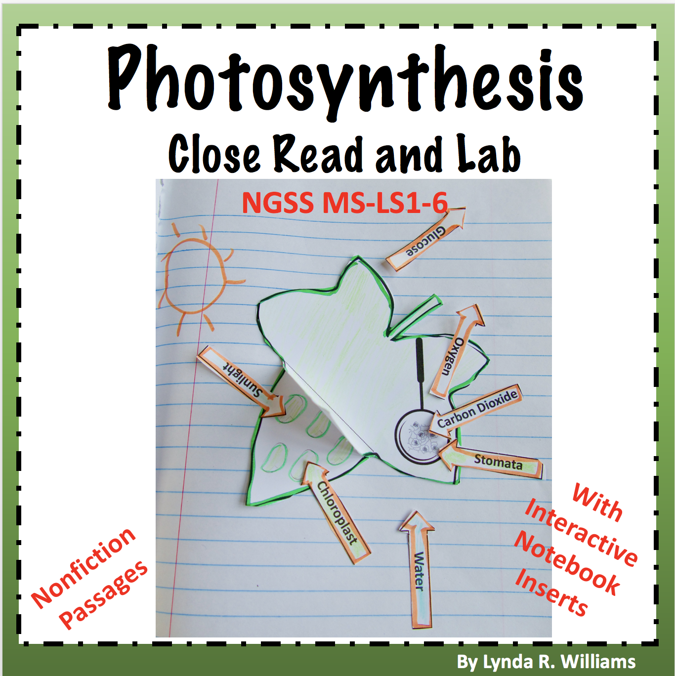 Teaching Science With Lynda Teaching Photosynthesis For