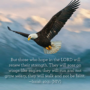 Always hope in the Lord...
