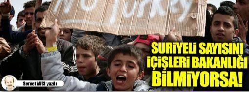 akademi dergisi, Mehmet Fahri Sertkaya, servet avcı, suriye sorunu, suriyeliler, beşar esad, ışid, ensar, muhacir, göçmenler, zulüm, fitne, akp'nin gerçek yüzü, içişleri bakanlığı