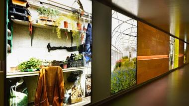 Le Jardin Hospitalier. Luz y plantas en el Hospital Roger Salengro en Lille, Francia