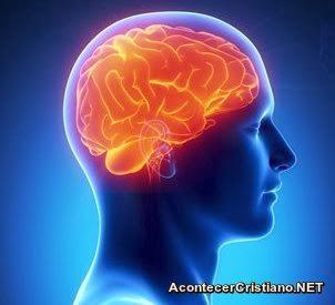 Cerebro indica riesgos de depresión