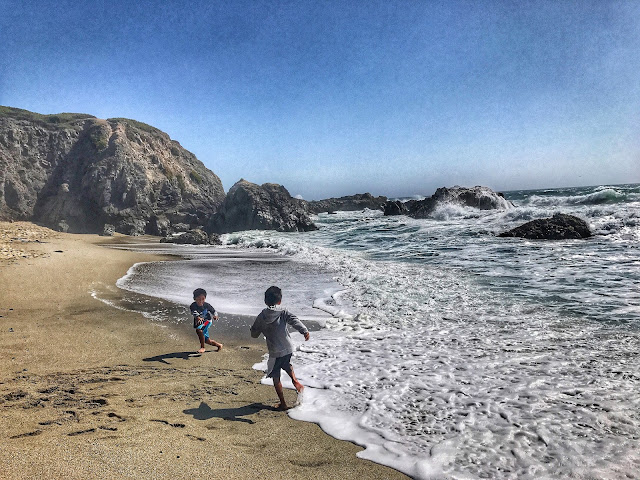 Beach at Bodega Bay trail hike