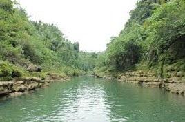 Menentukan Jenis Umpan Jitu Mancing Ikan Besar Di Sungai Yang Sudah Terbukti Hasilnya
