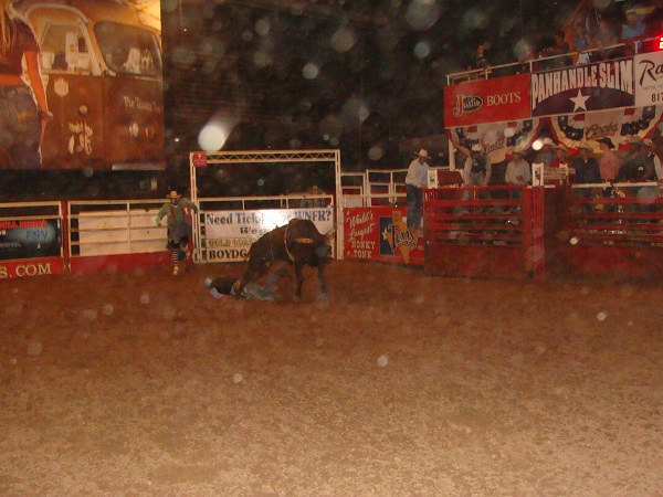 Bull Riders Rodeo in Fort Worth Texas auf den Stockyards