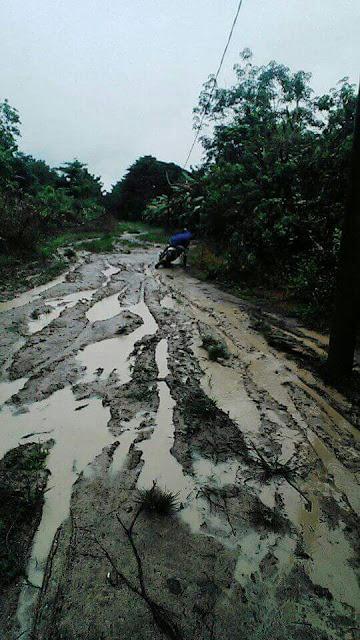 Kondisi Jalan Poros Di Kabupaten Oi Memprihatinkan