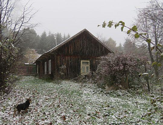 Drewniany dom pod lasem.