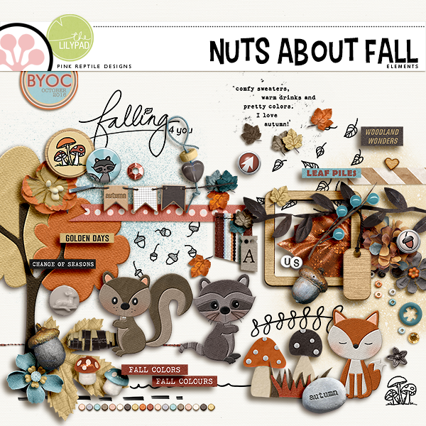 http://the-lilypad.com/store/Nuts-About-Fall-Elements.html
